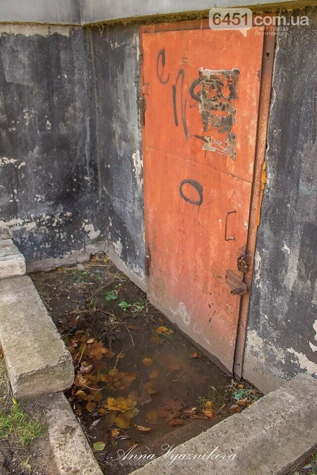 Жители Лисичанска буквально тонут в нечистотах, фото-4