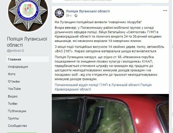 В Луганской области задержали преступников за незаконную вырубку леса, фото-1