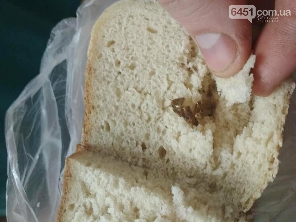 Акция: купи хлеб - получи таракана в подарок!, фото-1