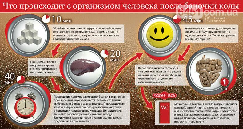 Coca Cola под микроскопом. Факты, которые поставят точку в вопросе: пить или не пить, фото-3
