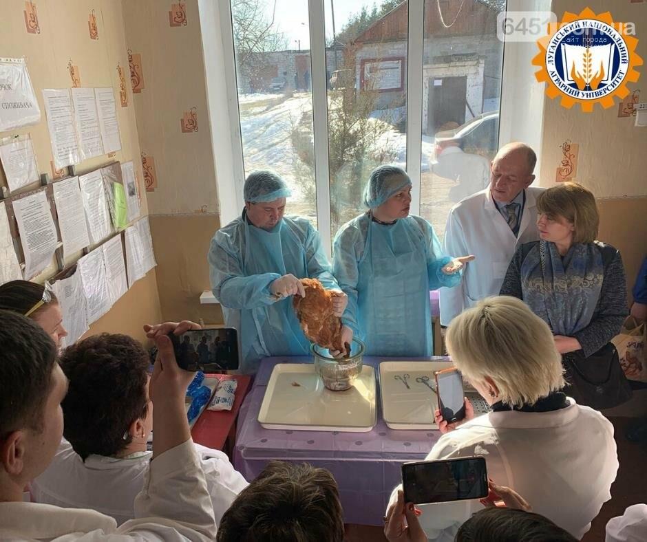 Топ-5 университетов Луганщины: выбираем ВУЗ для поступления, фото-7