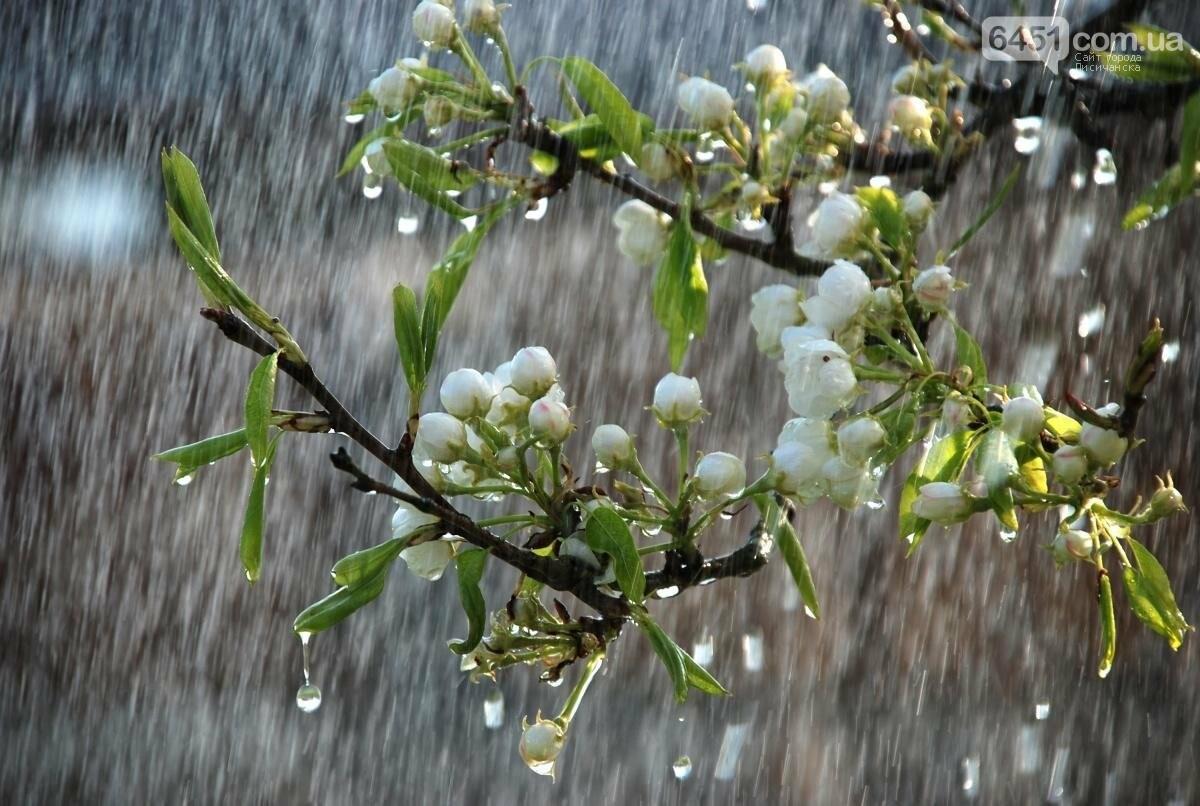 Доброе утро, Лисичанск! 28 мая: погода, гороскоп, праздники, фото-1