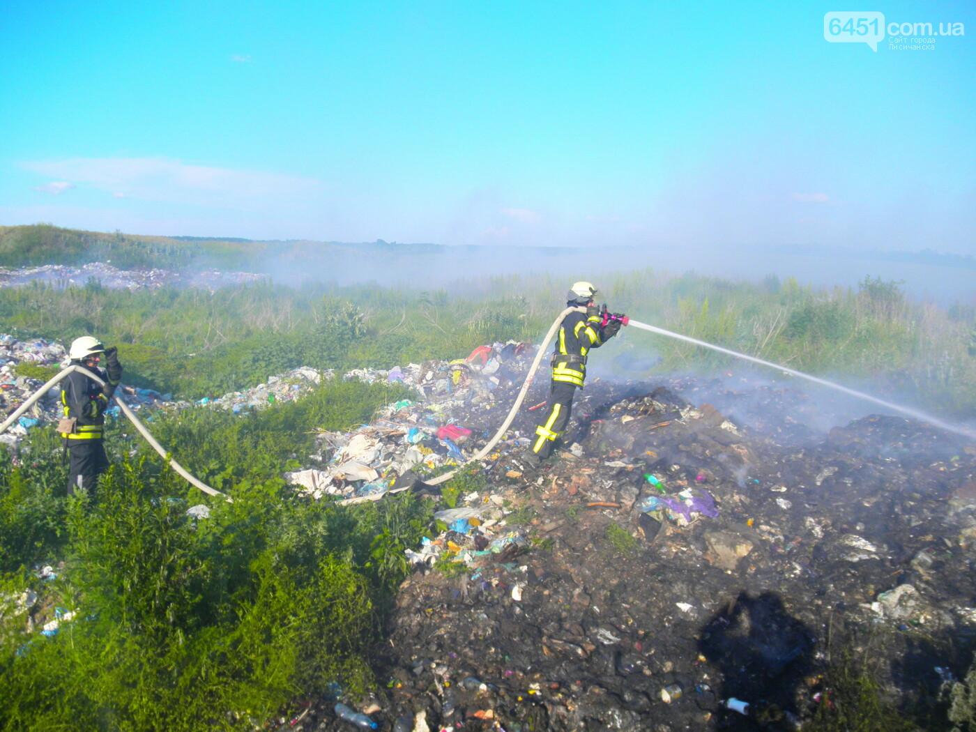 В Луганской области пожар охватил 2 га мусорной свалки, фото-1