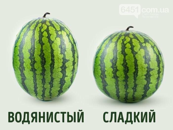 В Украине арбузы подорожали за год в три раз, фото-1