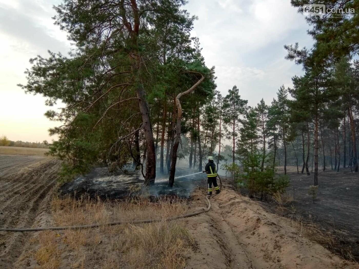 Часть Луганщины снова в огне, фото-2