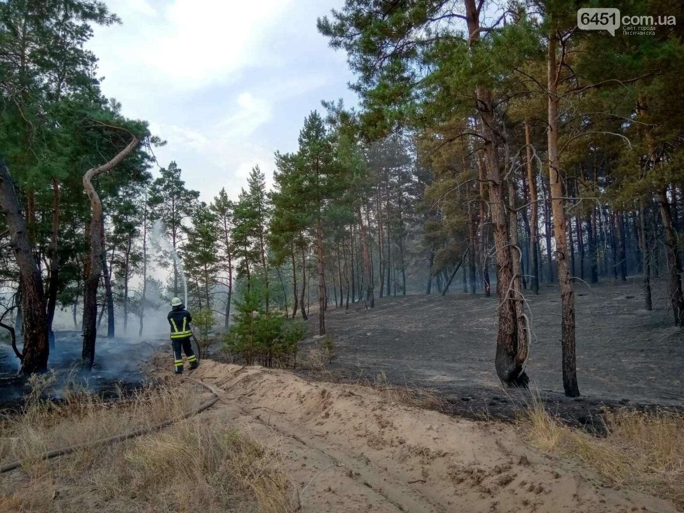 Часть Луганщины снова в огне, фото-1