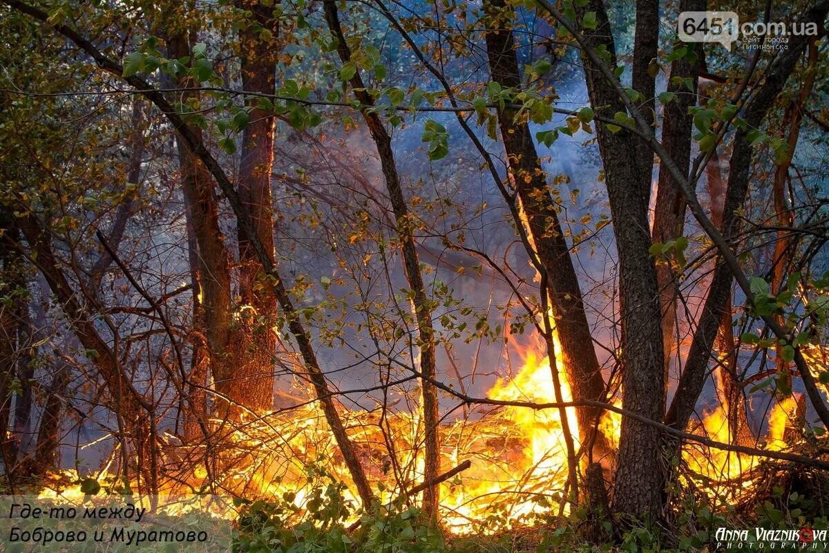 Последствия пожаров в Муратово и Сиротино, фото-1