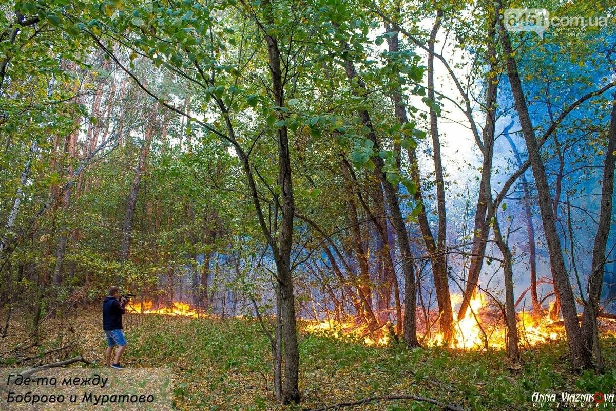 Последствия пожаров в Муратово и Сиротино, фото-3