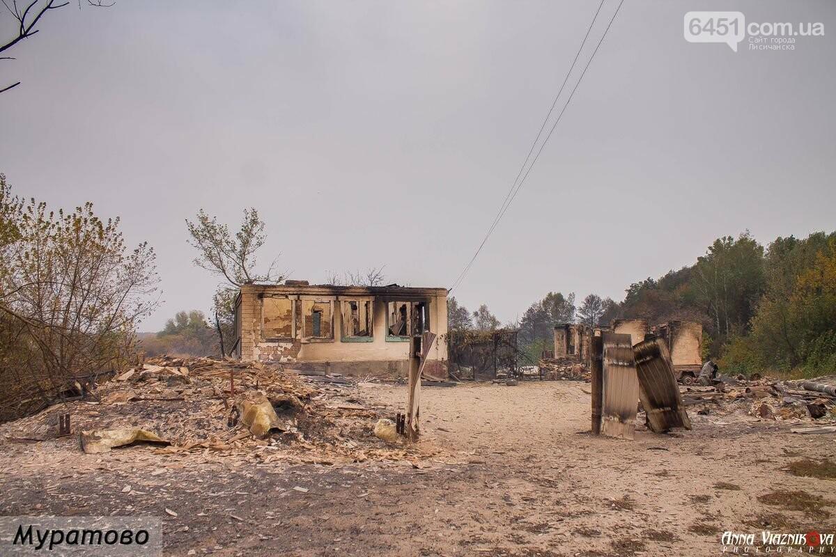 Последствия пожаров в Муратово и Сиротино, фото-4