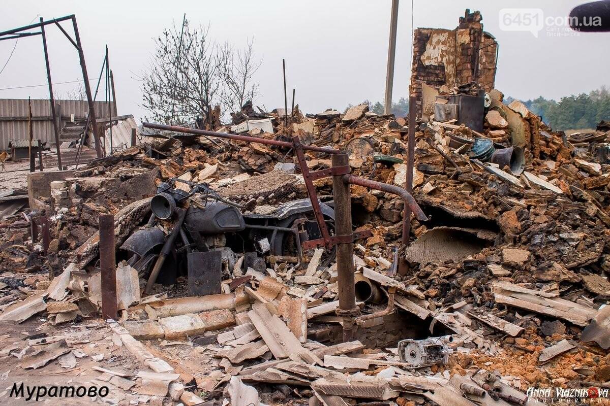 Последствия пожаров в Муратово и Сиротино, фото-6