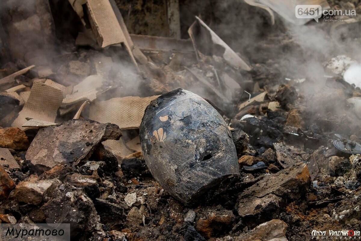Последствия пожаров в Муратово и Сиротино, фото-9