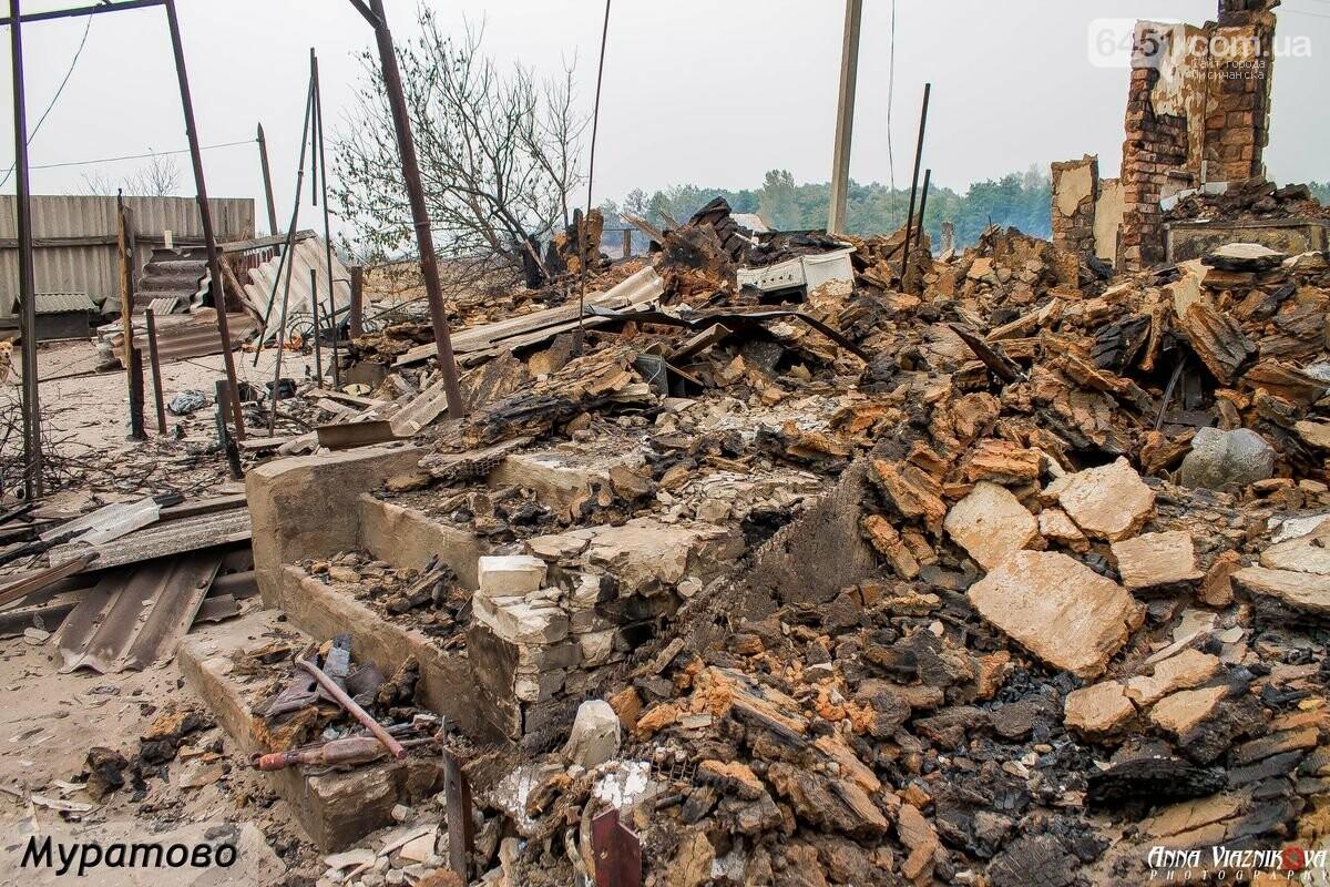 Последствия пожаров в Муратово и Сиротино, фото-11