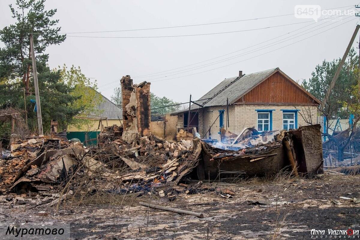 Последствия пожаров в Муратово и Сиротино, фото-14