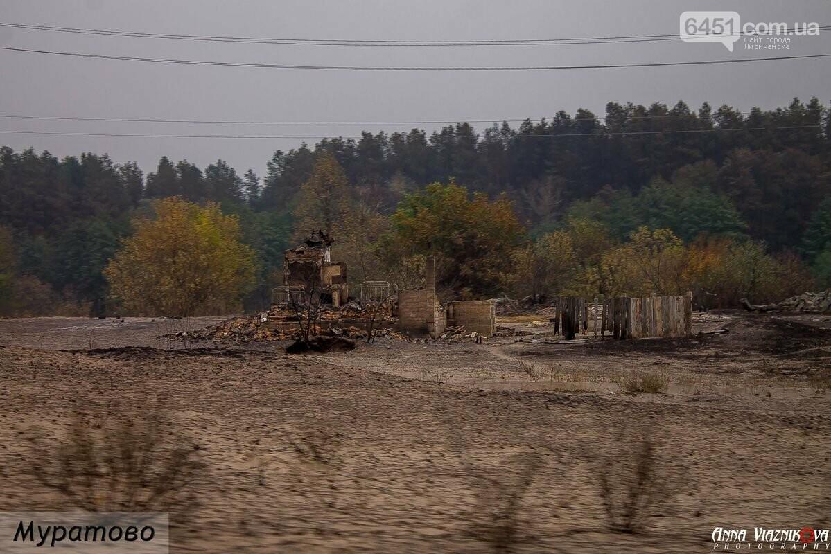 Последствия пожаров в Муратово и Сиротино, фото-17