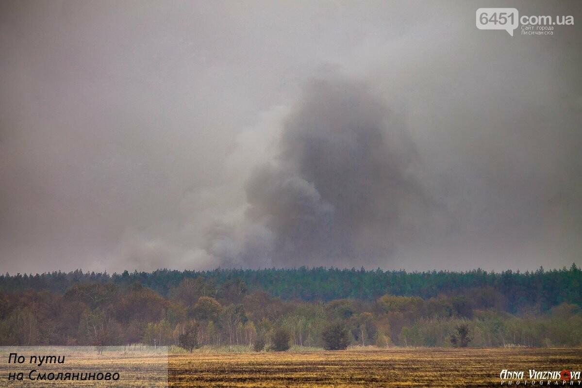 Последствия пожаров в Муратово и Сиротино, фото-18