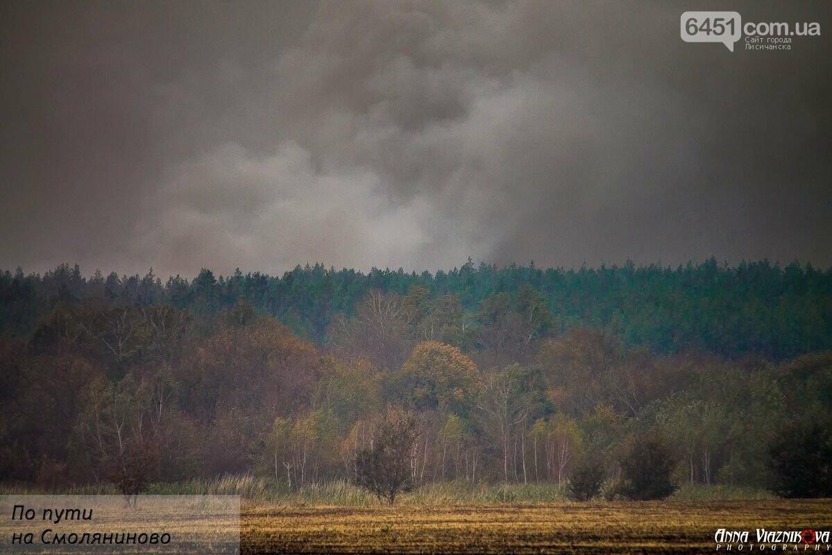 Последствия пожаров в Муратово и Сиротино, фото-19