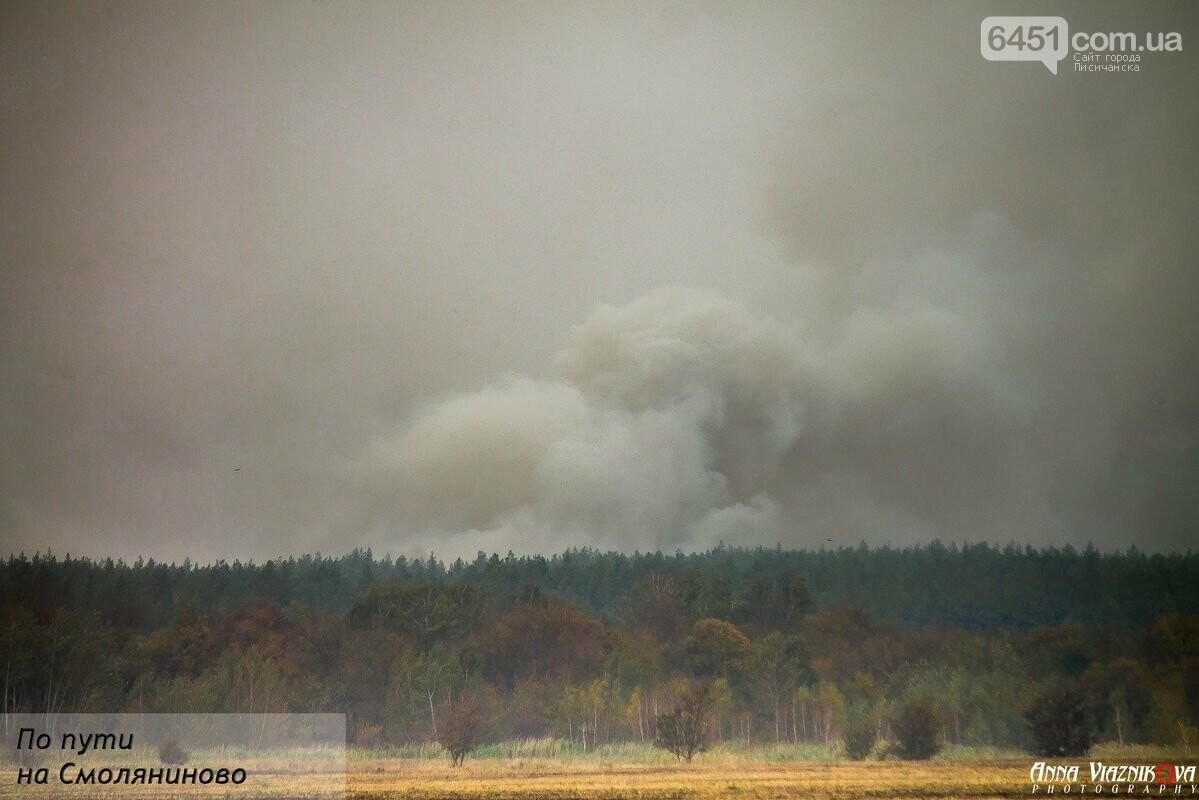 Последствия пожаров в Муратово и Сиротино, фото-20