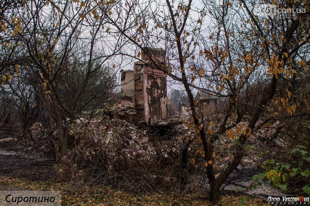 Последствия пожаров в Муратово и Сиротино, фото-25