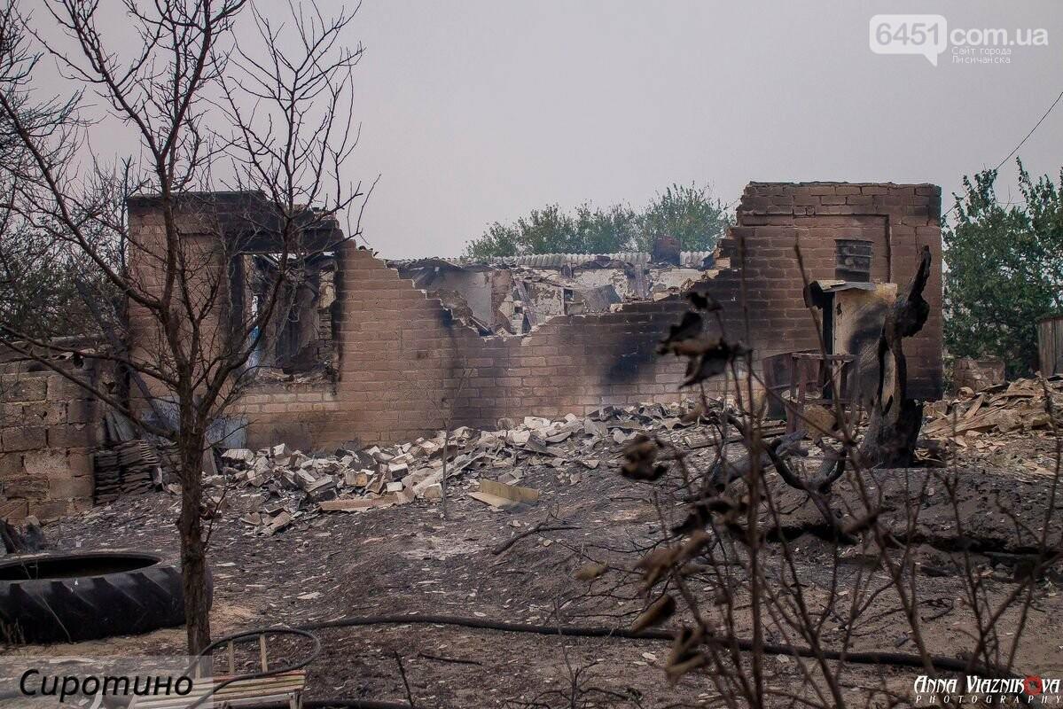 Последствия пожаров в Муратово и Сиротино, фото-27