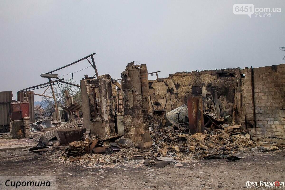Последствия пожаров в Муратово и Сиротино, фото-28