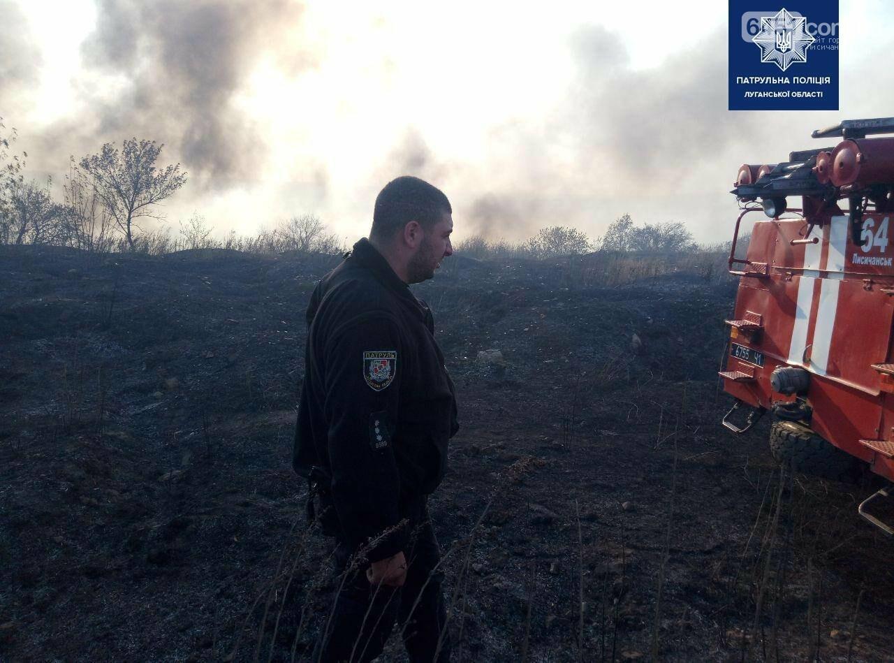 Между Лисичанском и Малорязанцево горела трава: есть пострадавшие здания, фото-2