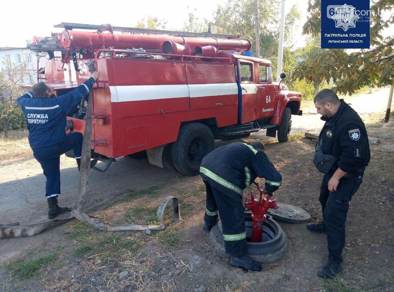 Между Лисичанском и Малорязанцево горела трава: есть пострадавшие здания, фото-3