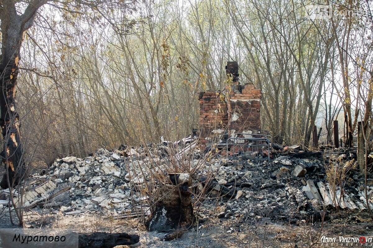 """Представители """"Оппозиционной платформы - За Жизнь"""" привезли помощь в пострадавшие от пожара населенные пункты, фото-14"""