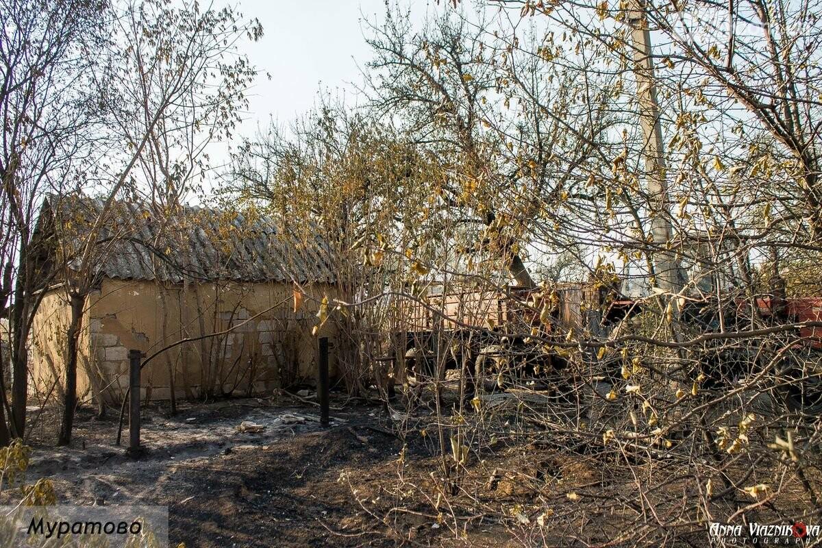 """Представители """"Оппозиционной платформы - За Жизнь"""" привезли помощь в пострадавшие от пожара населенные пункты, фото-16"""