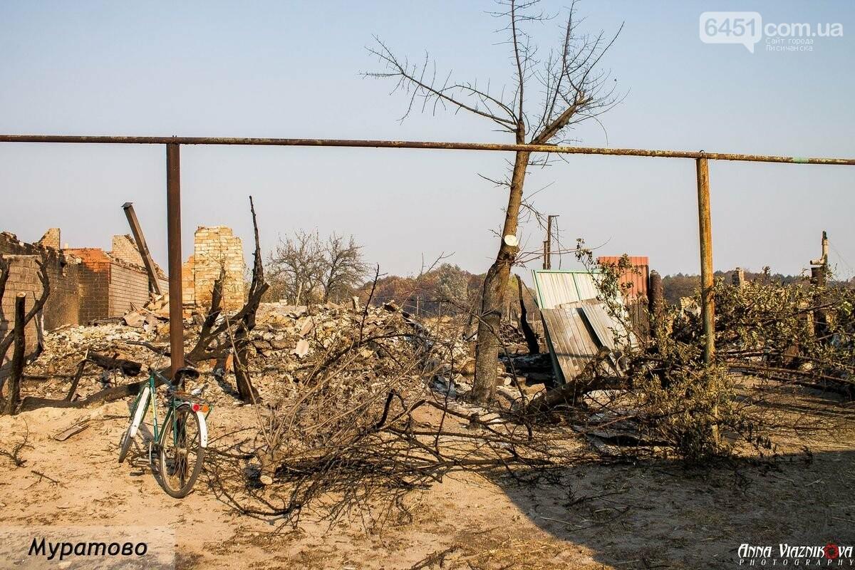 """Представители """"Оппозиционной платформы - За Жизнь"""" привезли помощь в пострадавшие от пожара населенные пункты, фото-17"""