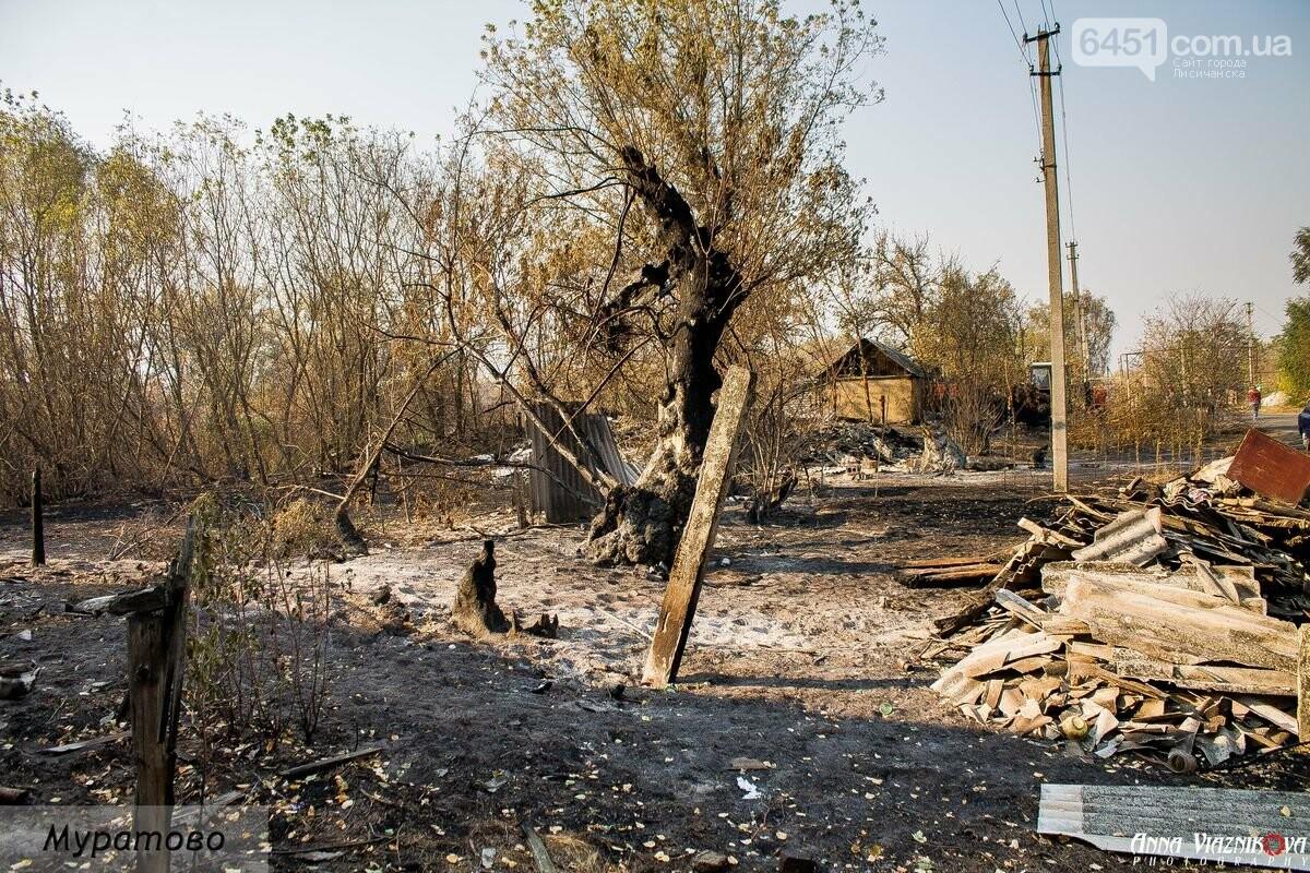 """Представители """"Оппозиционной платформы - За Жизнь"""" привезли помощь в пострадавшие от пожара населенные пункты, фото-19"""