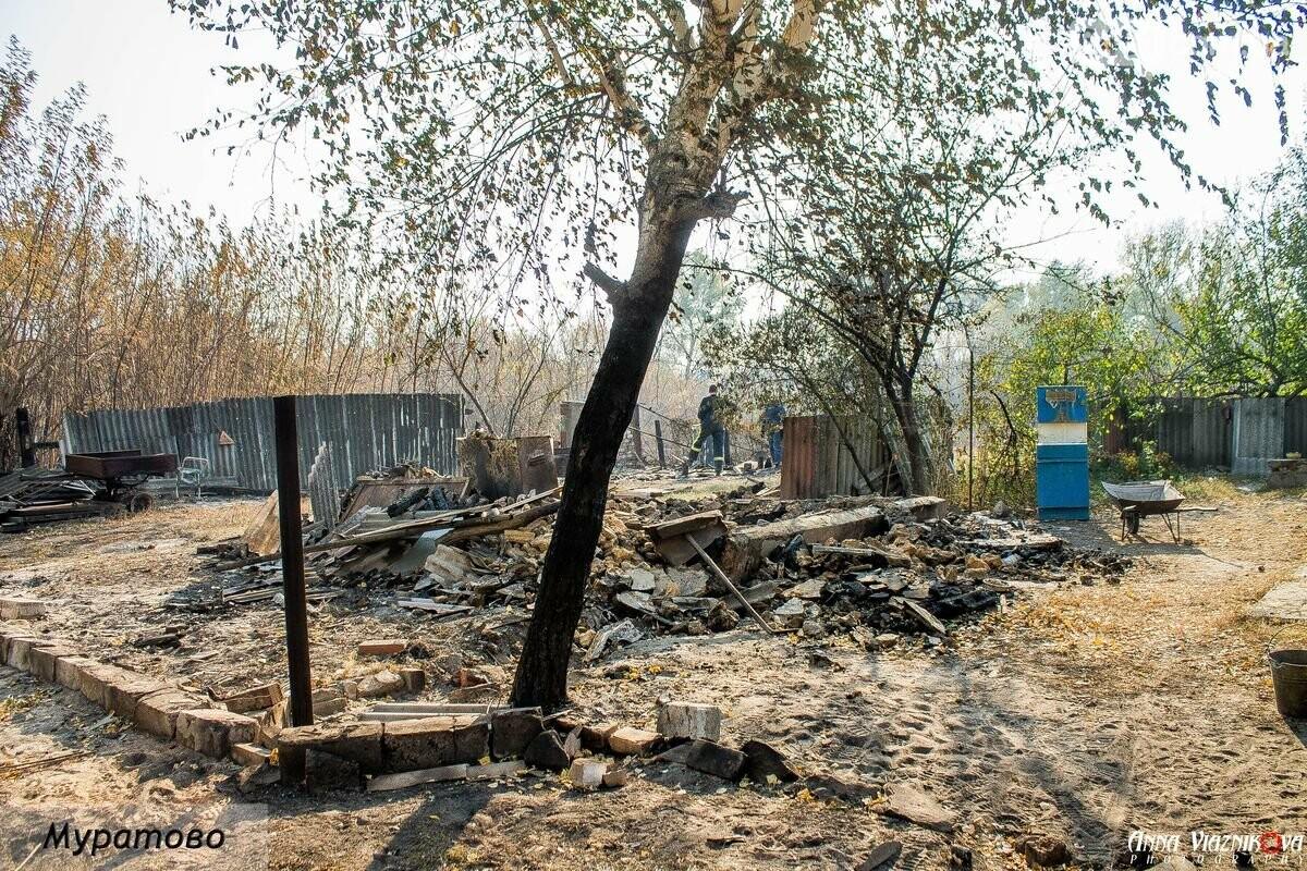 """Представители """"Оппозиционной платформы - За Жизнь"""" привезли помощь в пострадавшие от пожара населенные пункты, фото-20"""