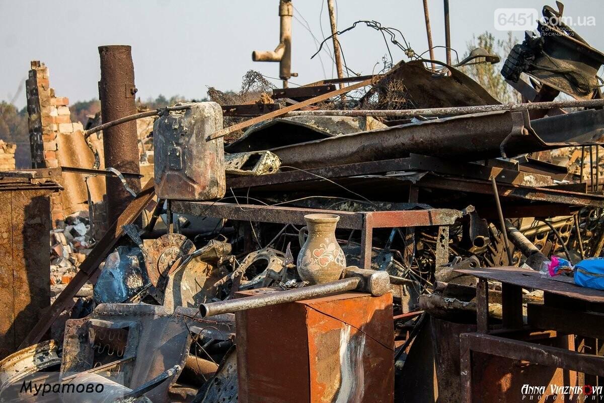 """Представители """"Оппозиционной платформы - За Жизнь"""" привезли помощь в пострадавшие от пожара населенные пункты, фото-27"""