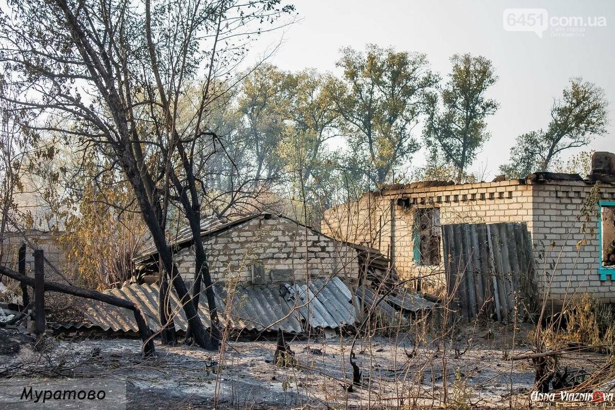 """Представители """"Оппозиционной платформы - За Жизнь"""" привезли помощь в пострадавшие от пожара населенные пункты, фото-28"""