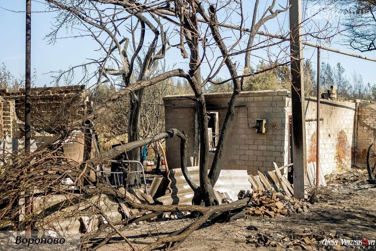 """Представители """"Оппозиционной платформы - За Жизнь"""" привезли помощь в пострадавшие от пожара населенные пункты, фото-105"""