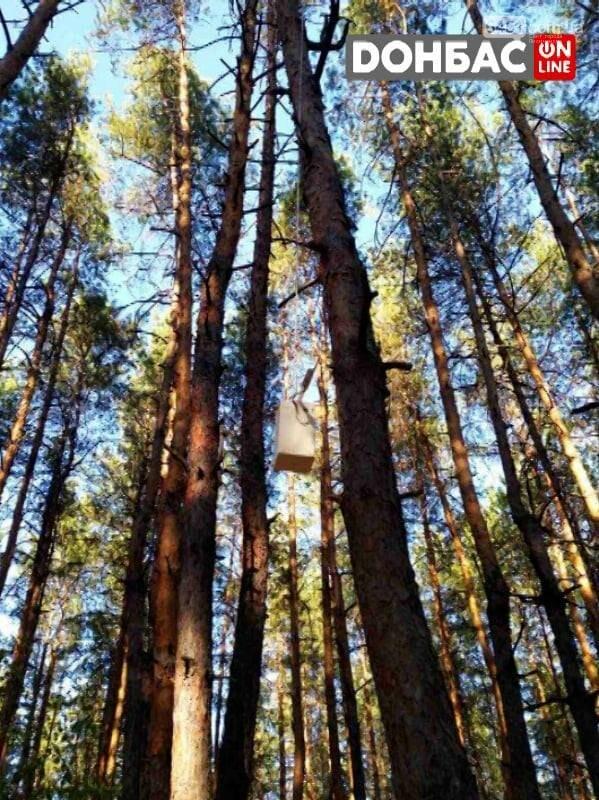 В лесах Луганщины нашли пакеты с взрывчатками с дистанционными взрывателем, фото-2