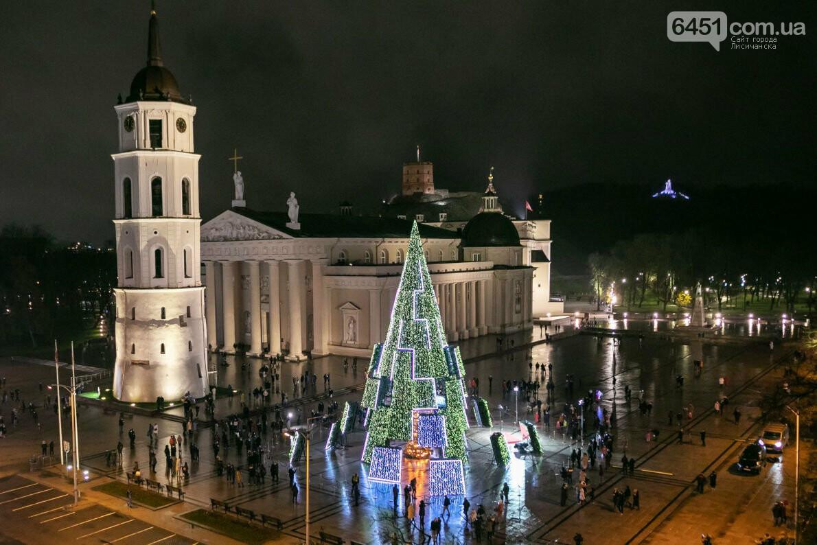 Главная ель Литвы