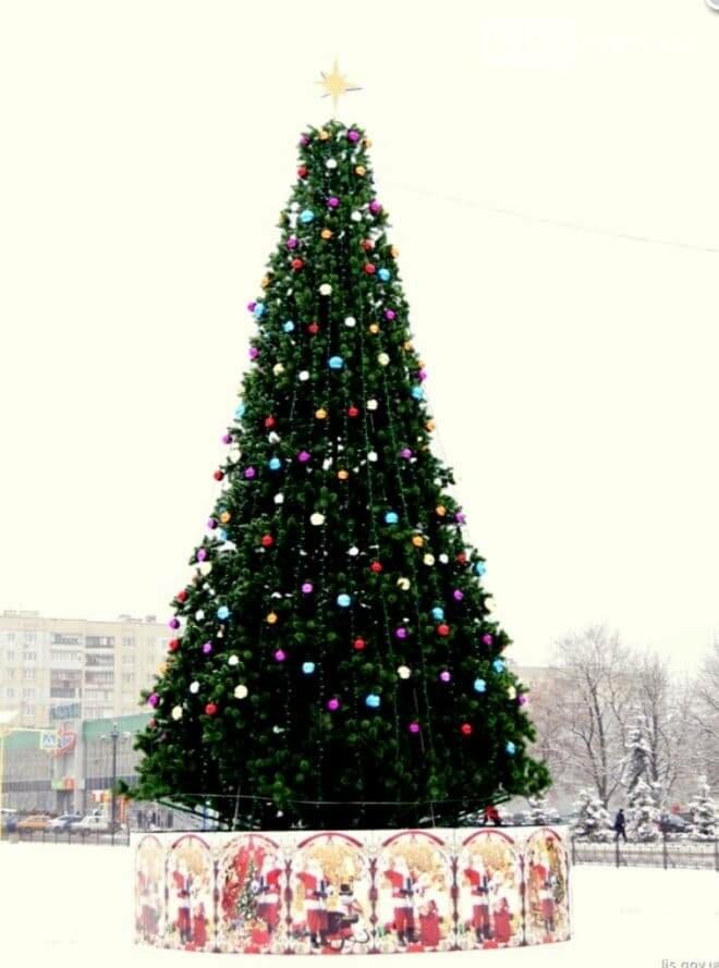 В Лисичанске установили главную ёлку города, фото-1