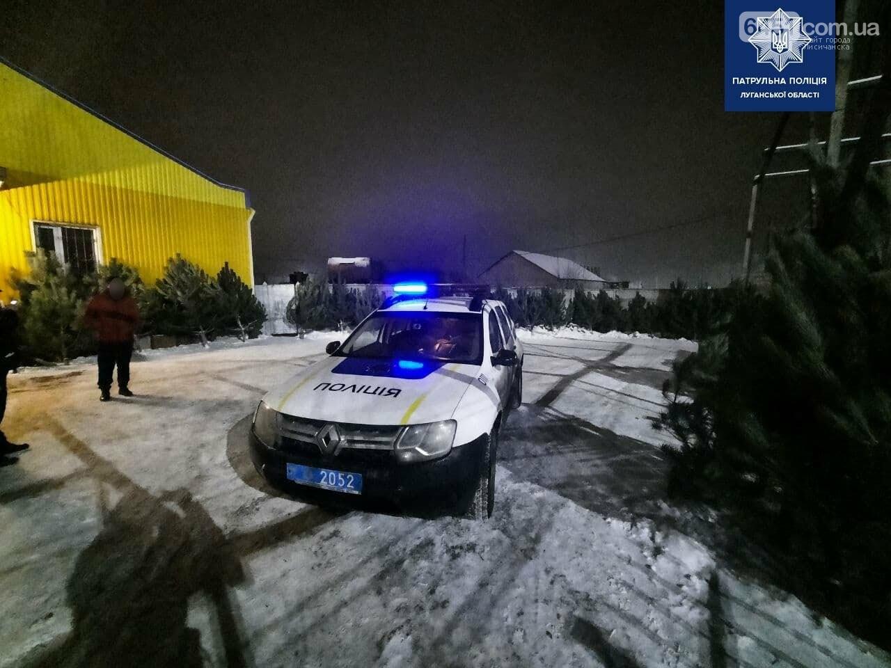 В Лисичанске обнаружен мужчина, который незаконно торговал ёлками, фото-1