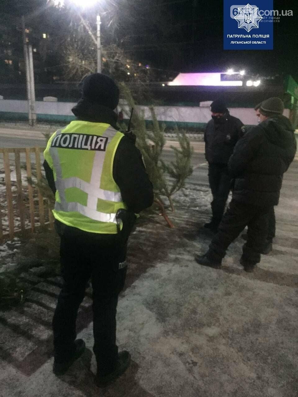 В Северодонецке мужчина незаконно продавал ёлки, фото-1