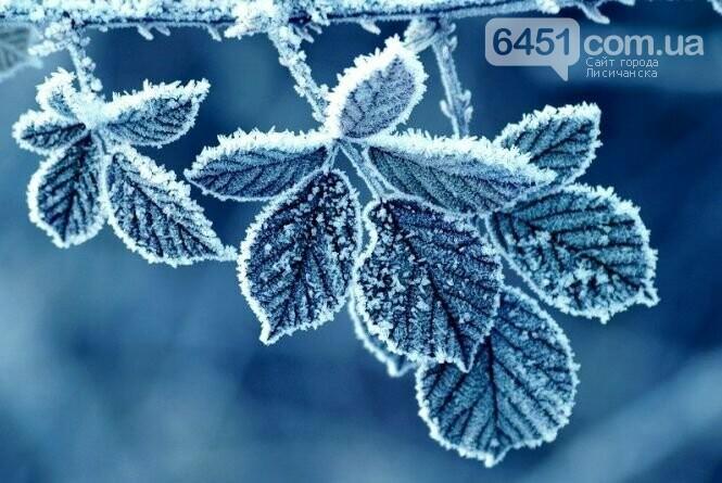 29 декабря: погода, праздники, приметы, фото-2