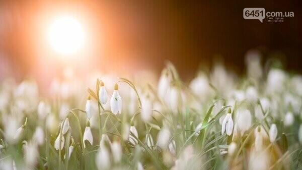 12 марта: погода, праздники, приметы, фото-3