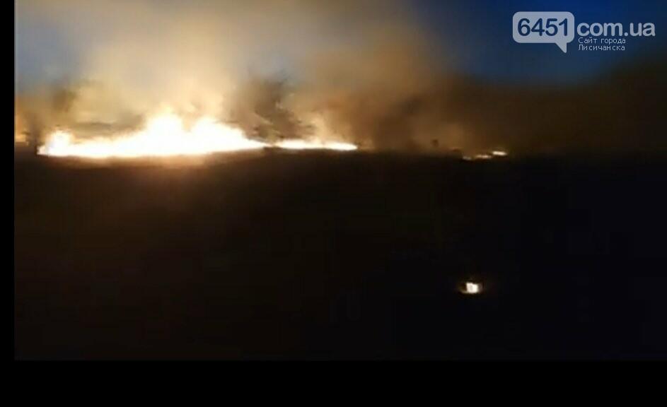 В Павлограде неизвестные подожгли  сухую траву, фото-3