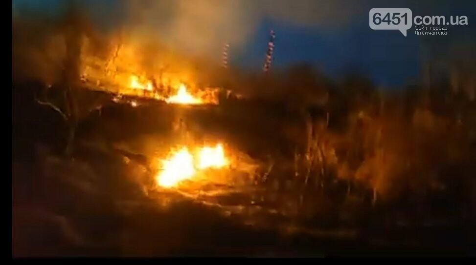 В Павлограде неизвестные подожгли  сухую траву, фото-2